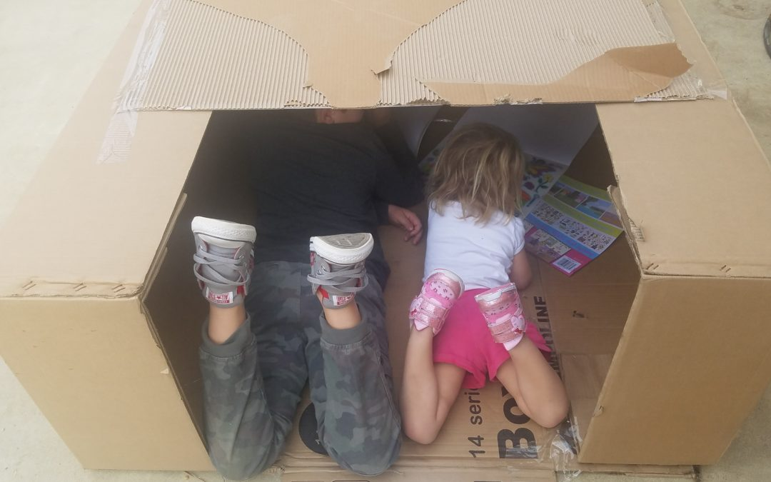 Build a box fort !